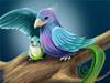 [找茬]彩鸟传说