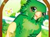 [装饰]彩羽小鹦鹉