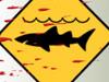 [发泄]悉尼大鲨鱼
