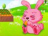 [农场]兔子农场
